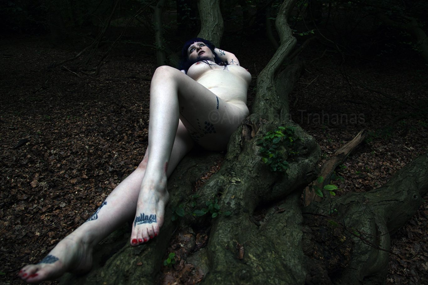 woman laying on tree branch